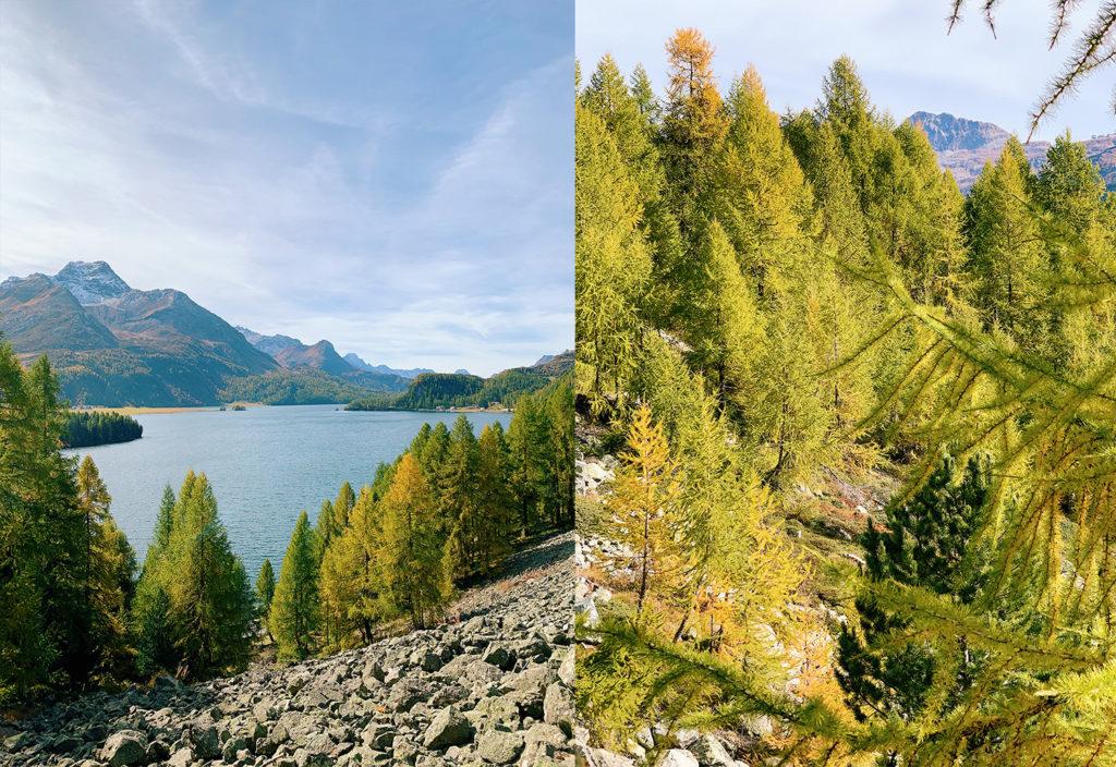 8-Waldhaus-Sils-Herbstwanderung-Engadin-1024x704 Waldhaus Sils – Herbstliches Wander- und Wellnesswochenende
