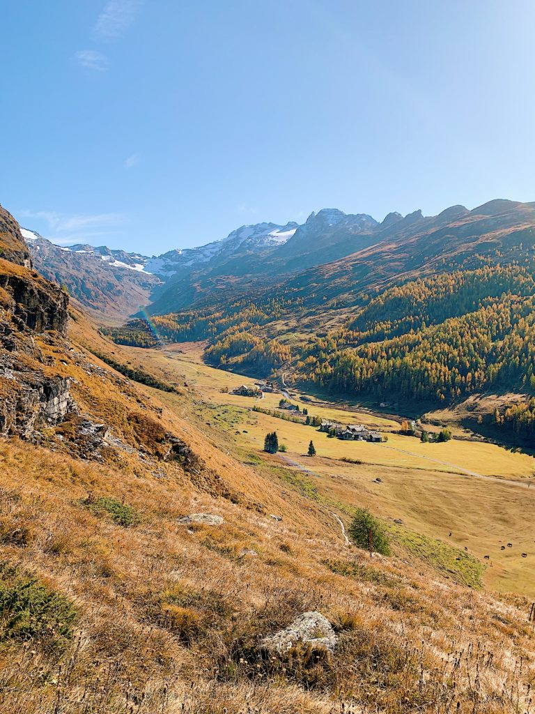 E2EBDE30-F2F6-40E4-8927-D64314500CE6-768x1024 Waldhaus Sils - Hiking & Wellness Weekend in Autumn