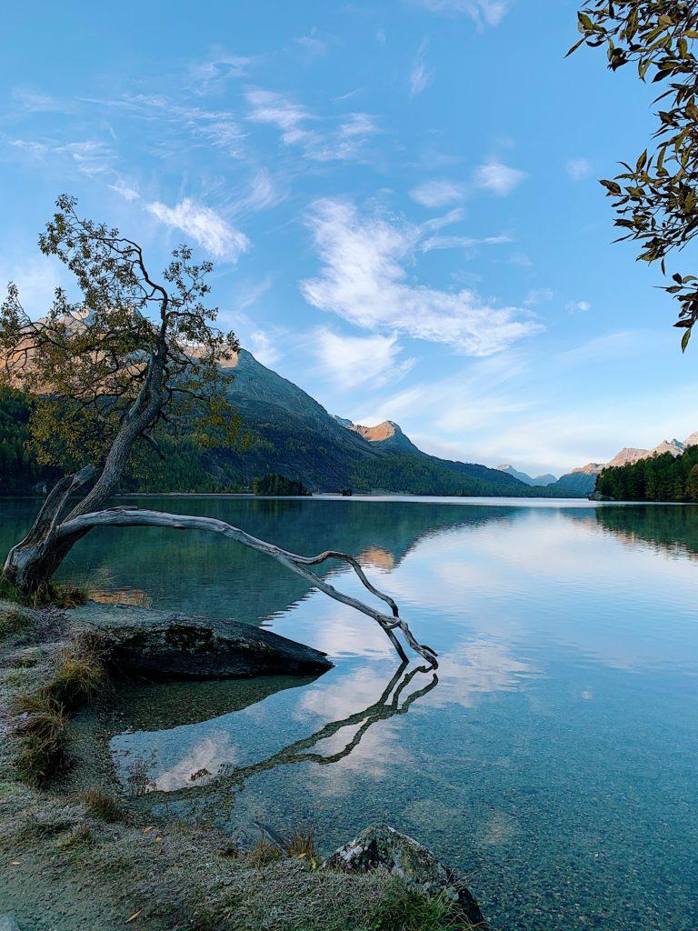 Waldhaus-Sils-Herbstwanderung-Engadin_11-768x1024 Waldhaus Sils – Herbstliches Wander- und Wellnesswochenende