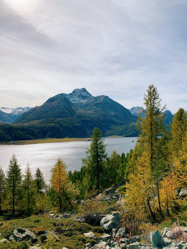 Waldhaus-Sils-Herbstwanderung-Engadin_14-768x1024 Waldhaus Sils – Herbstliches Wander- und Wellnesswochenende