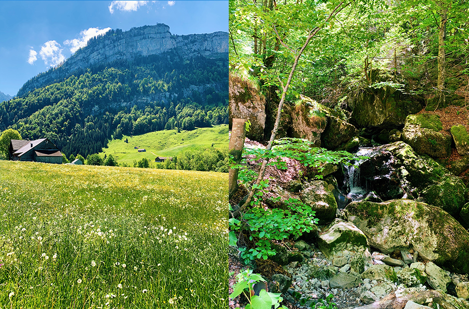 Appenzell_Saxerlücke_NaturellyMichaela-x-IkeaSchweiz101 Beautiful hiking trails in Switzerland: 3 trails in Appenzell