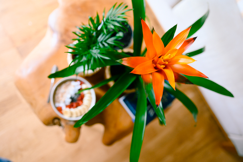 ikea_naturellymichaela-1 10 Tipps wie du ein gemütliches und achtsames Zuhause gestalten kannst