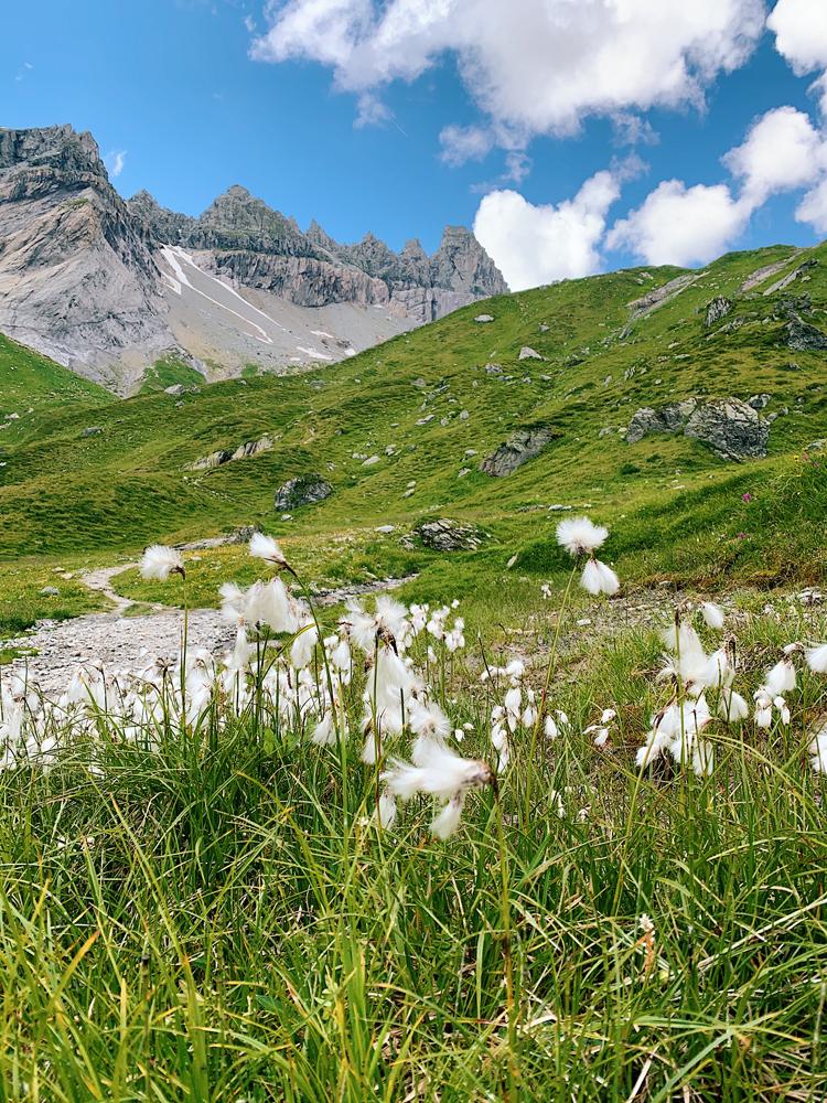 LAAX-Sommer-Wandern-Naturellymichaela_1-3 Sommer in Graubünden – Natur, Abenteuer & Greenstyle in der schönsten Bergregion