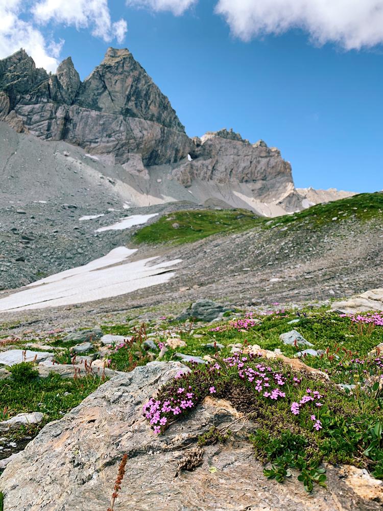 LAAX-Sommer-Wandern-Naturellymichaela_26 Sommer in Graubünden – Natur, Abenteuer & Greenstyle in der schönsten Bergregion
