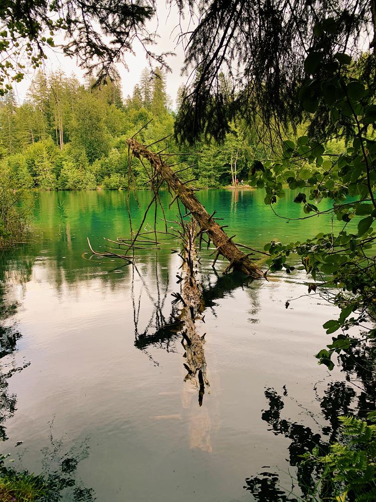 LAAX-Sommer-Wandern-Naturellymichaela_52 Sommer in Graubünden – Natur, Abenteuer & Greenstyle in der schönsten Bergregion